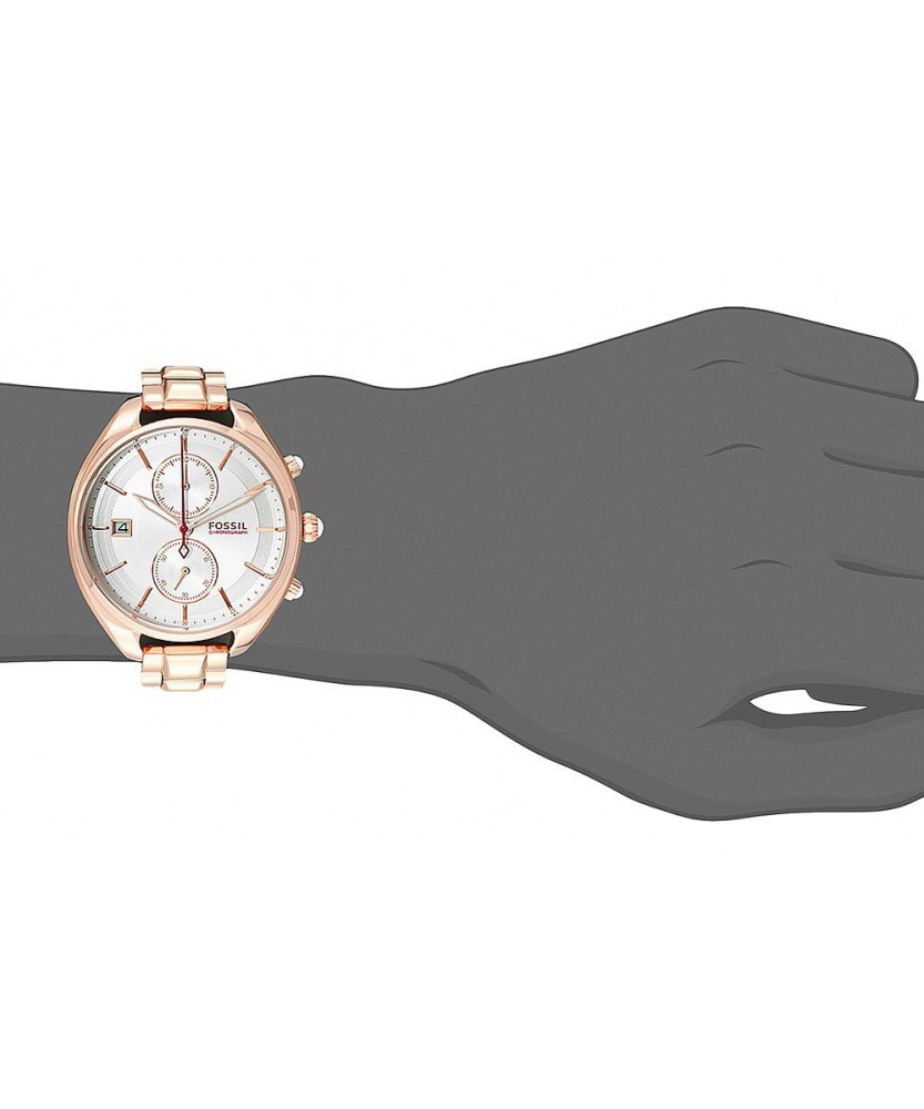 Fossil Ch2977 2
